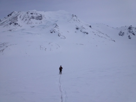 Skiing across the Jarvis Glacier